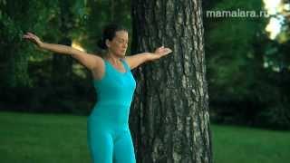 Гимнастика для беременных | Mamalara.ru(Это видео часть полуторачасовой программы гимнастики для беременных. Гимнастика подготовлена педиатром,..., 2012-06-12T15:58:00.000Z)