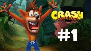 crash bandicoot  parte 1