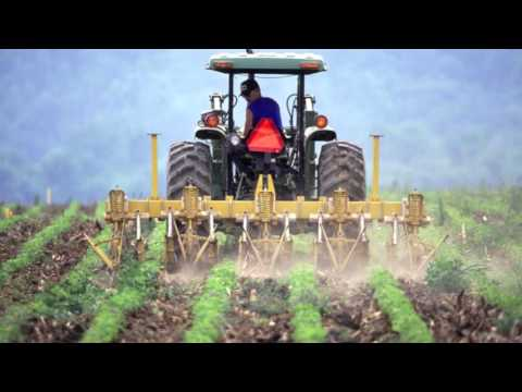 Industrial Agriculture and it's implications for society