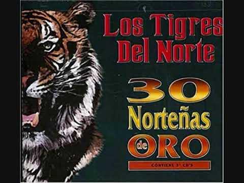 LOS TIGRES DEL NORTE=30 NORTENAS DE ORO DISCO=1