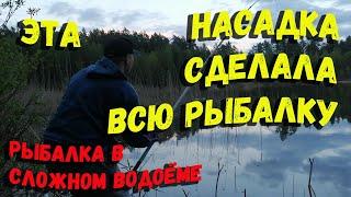Ловля карася в сложном водоеме