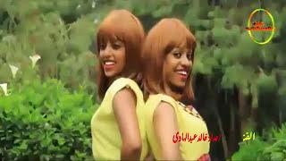 اغنية سودانية  / السافر بعيد الليله وين ديارك / الفنان فضل الله عبدالله /2017