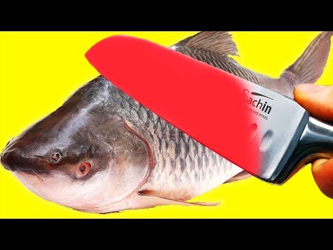 EXPERIMENT Glowing 1000 Degree KNIFE VS $25 FISH