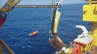 New Video Of Boat From Teens Who Went Missing At Sea