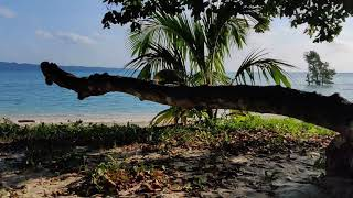 Small Glimpse of Havelock Island/Swaraaj Dweep, Andaman & Nicobar Island Visit