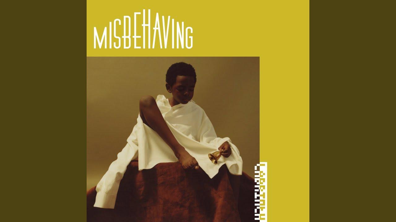 Download Misbehaving