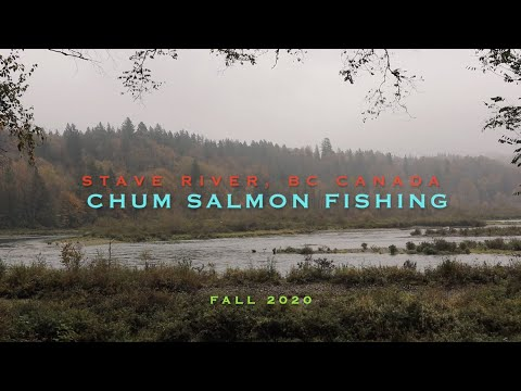 SALMON FISHING STAVE RIVER