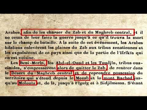 Origines Des Berberes Ouacine Et Merinides (Historiens Medievaux Arabophones)