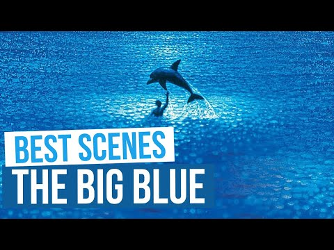 The mighty 113m/ 370ft Le Grand Bleu arrived in Holland yesterday from YouTube · Duration:  2 minutes 22 seconds