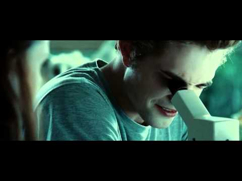 Sumerki 2008 XviD BDRip SMALL RiP   копия cut