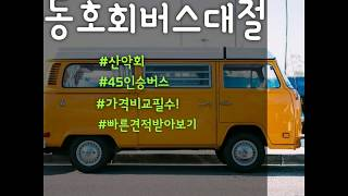 동호회버스, 동창회버스 전세버스대절 40인승,45인승 …