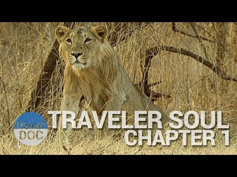 Traveler Soul | Chapter 1 - Full Documentary