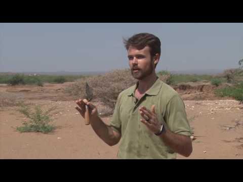 Enduring Footprints Archeology