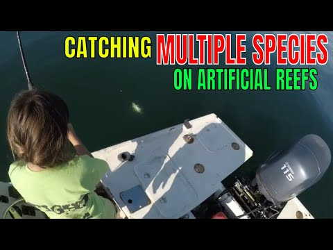 CATCHING MULTIPLE SPECIES ON FLORIDA'S ARTIFICIAL REEFS