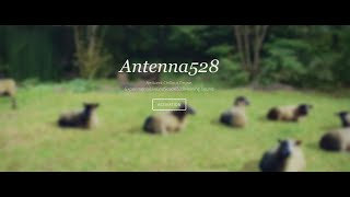 antenna528 live stream