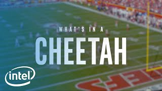 What's In A Cheetah | Intel