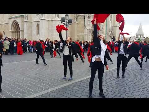 Flashmob at the Fisherman's Bastion in Budapest for St. Martin's Day 2017