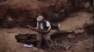 Dinosaur Hunters Teaser
