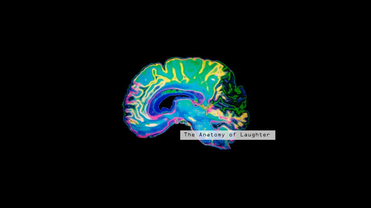The Anatomy of Laughter- a documentary - YouTube