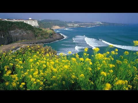 Jeju Island, South Korea - Best Travel Destination