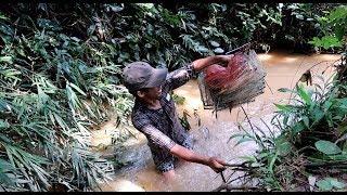 Bẫy cá suối bằng lưới 12 Cửa Ngục ✅