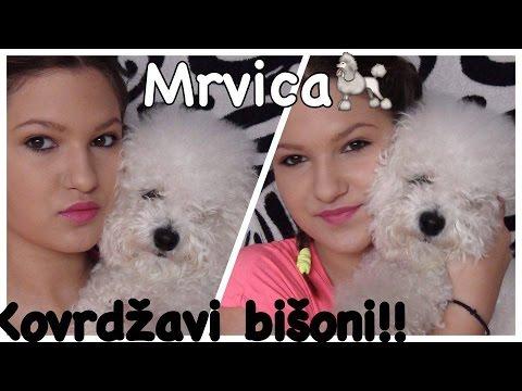 Nesto o Mrvici i bisonima!! Collab with Animal care! :)