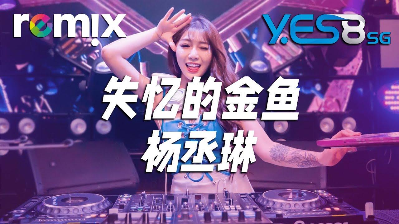 失忆的金鱼 - 杨丞琳【DJ REMIX】⚡  YES8 Ft. GlcMusicChannel