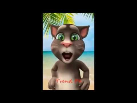 Mere Rashke qamar / cat cartoon/animation song