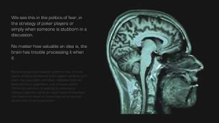 Защитный механизм мозга