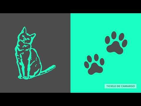 Cães e Gatos - Fatos e Curiosidades