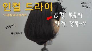 미용(일반)국가자격증/그래듀에이션/인컬드라이~!