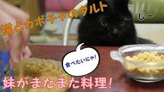 猫と妹のカボチャタルト thumbnail