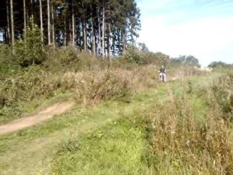 dirt bike 200 loncin