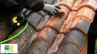 Nettoyage toiture, démoussage toiture, anti mousse