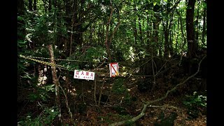 Selbstmordwald - Die Wahrheit ! | A.B.K