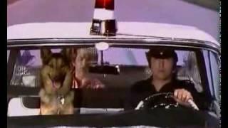 Eddy Mitchell shreds Sur la Route de Memphis