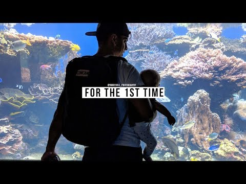 Taking my baby to the Aquarium | Hawaii | S2 Ep6