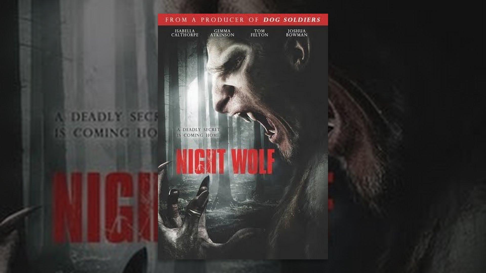 Download Night Wolf