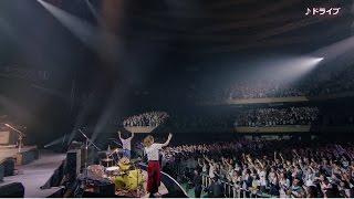 Live DVD / Blu-ray 『チャットモンチーのすごい10周年 in 日本武道館!...