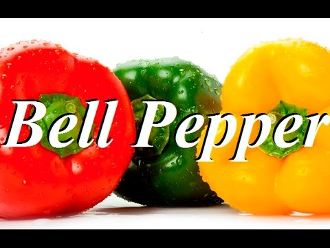 Top 10 Health Benefits of Bell Pepper - YouTube