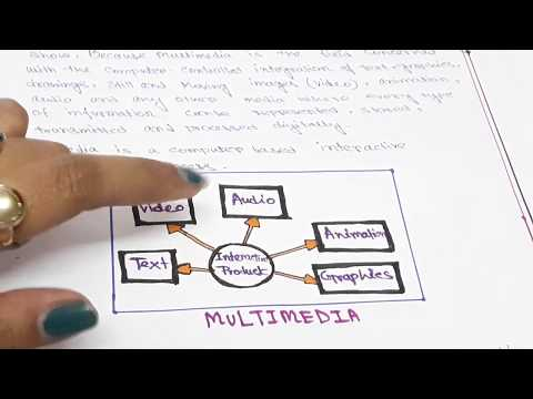 WHAT IS MULTIMEDIA WITH NOTES  || MULTIMEDIA