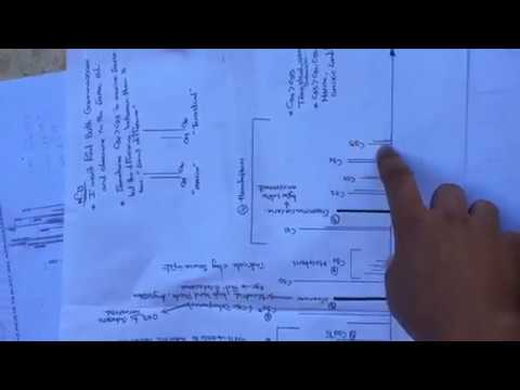 Geochemistry- GC & GC/MS
