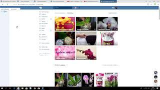 Інструкція як брати участь у розіграші і як замовляти орхідеї