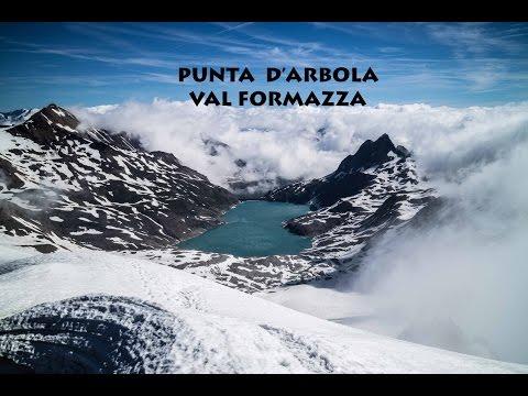 Punta d'Arbola dal