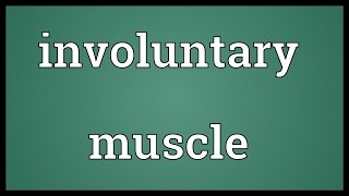 Involuntary muscle Meaning