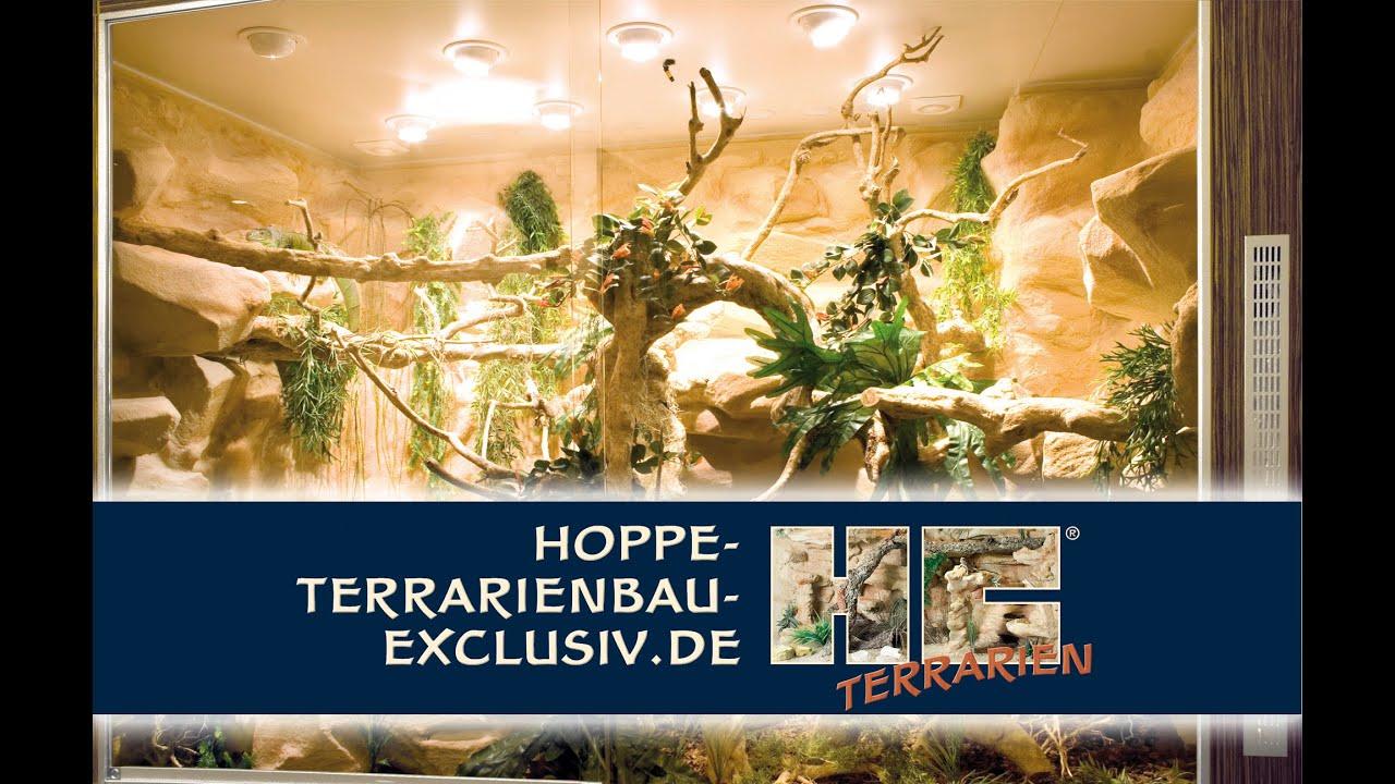 unser wildes wohnzimmer:Exclusives Terrarium für das anspruchsvolle Ambiente – YouTube