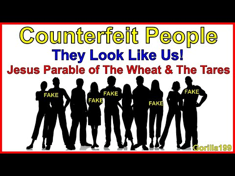 Counterfeit Humans  Jesus Parable of The Wheat and The Tares