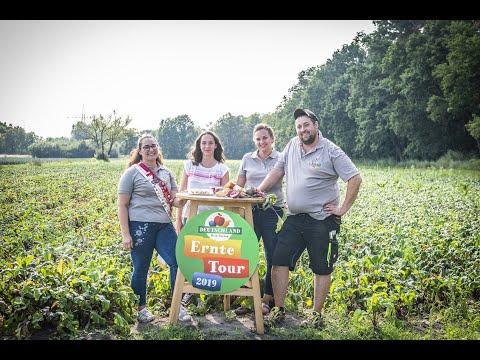 """Rote Bete Ernte im Knoblauchsland – """"Deutschland – Mein Garten."""" – Ernte-Tour 2019"""