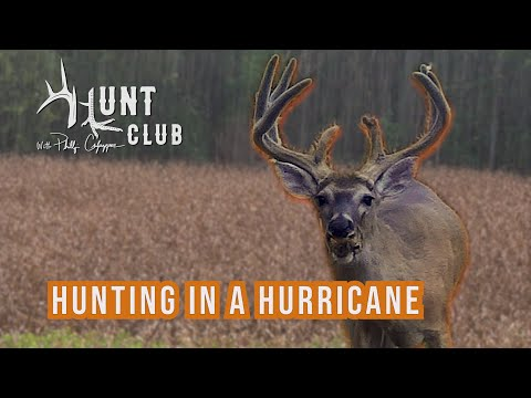 8-29-20_Target Buck At 70 Yards    TN Opening Day    Video 4