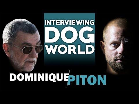Interviewing Dog World #16 | Dominique Piton